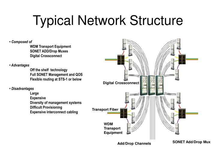 Typical Network Structure