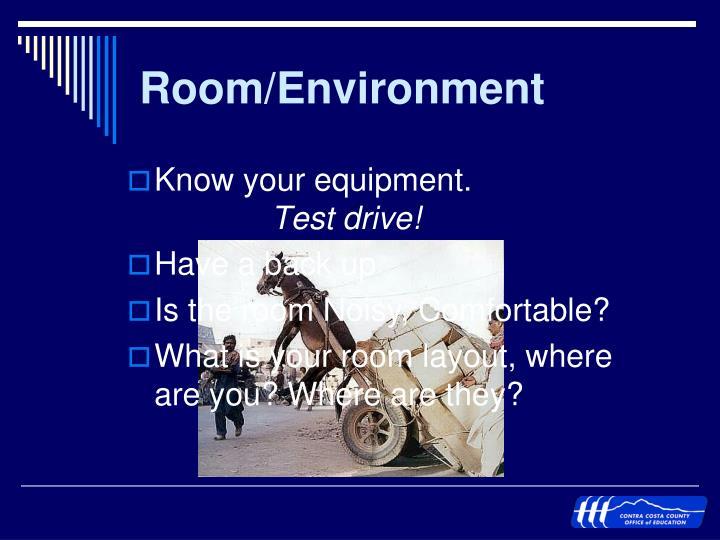 Room/Environment
