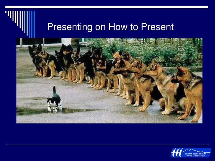 Presenting on How to Present