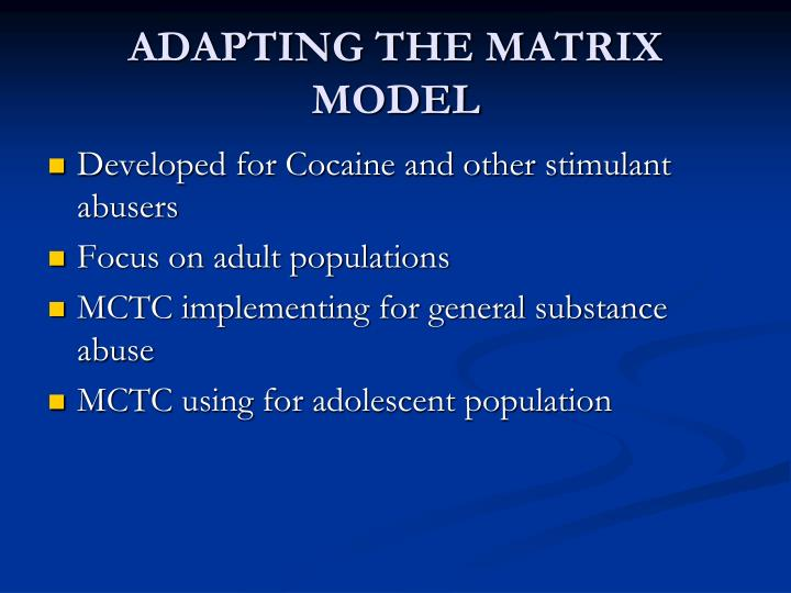 ADAPTING THE MATRIX MODEL