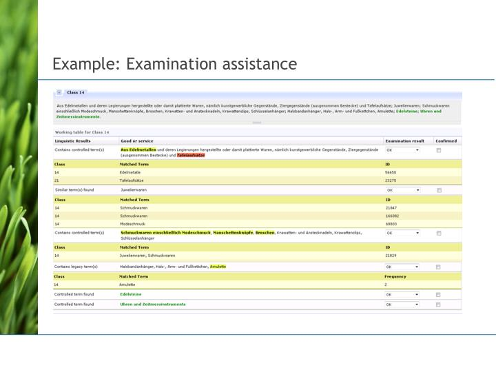 Example: Examination assistance