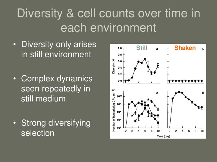 Diversity & cell counts over time in each environment