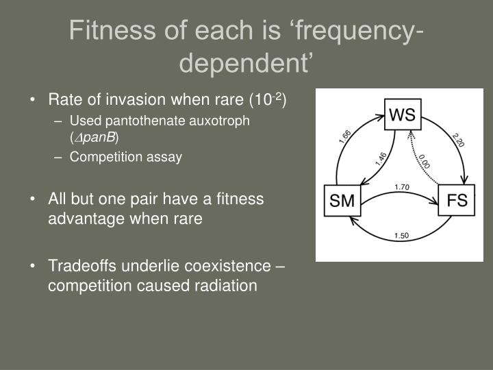 Fitness of each is 'frequency-dependent'