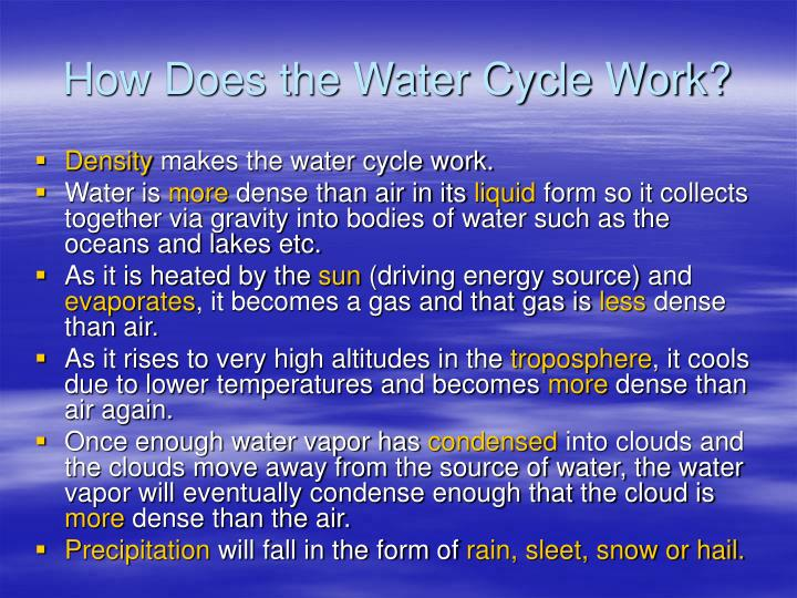 How Does the Water Cycle Work?