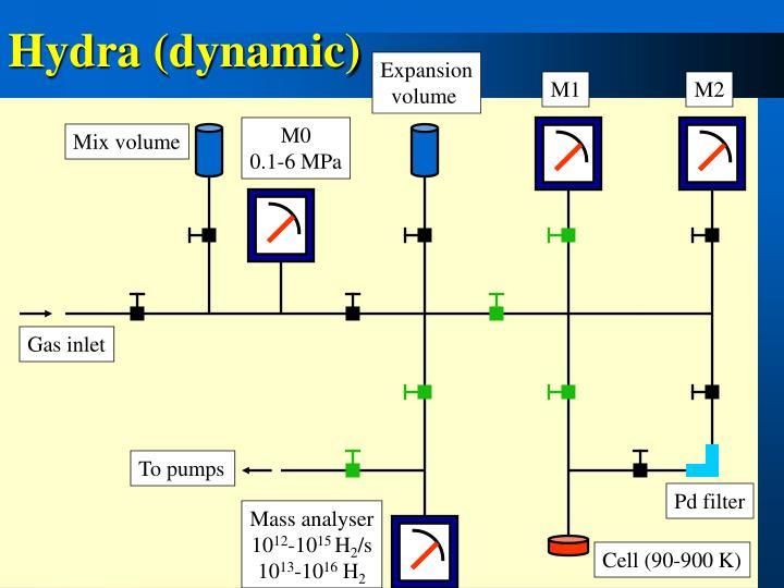 Hydra (dynamic)