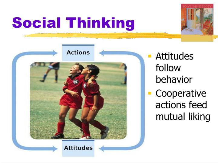 Social Thinking