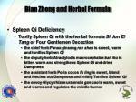 bian zheng and herbal formula