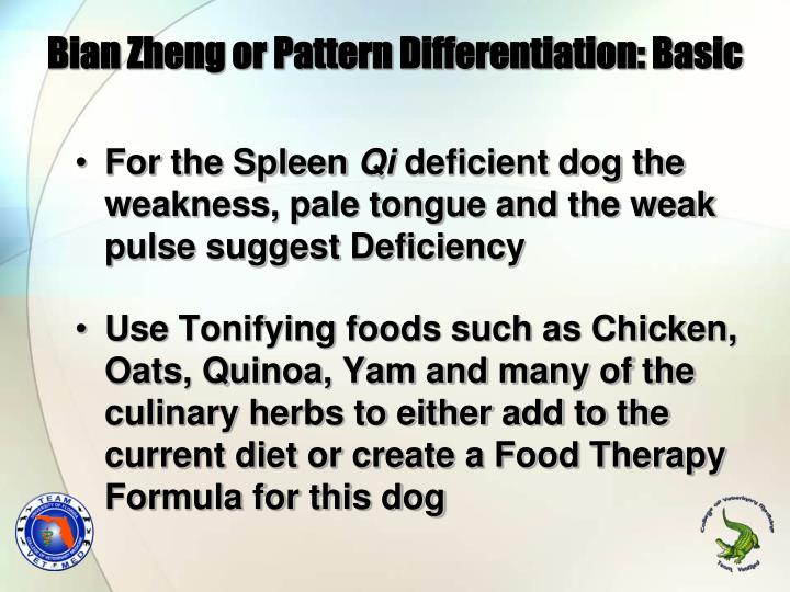 Bian Zheng or Pattern Differentiation: Basic