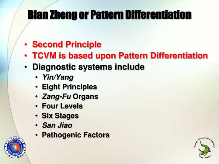 Bian Zheng or Pattern Differentiation