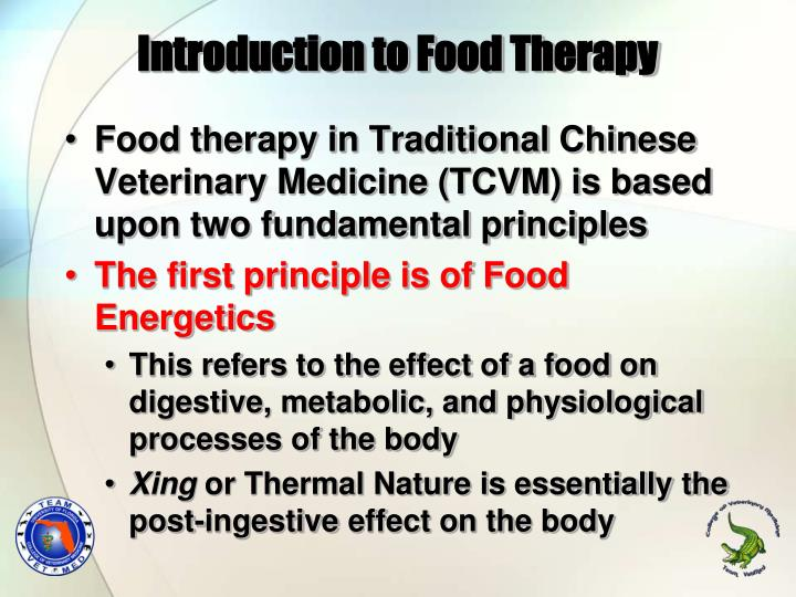 Introduction to Food Therapy
