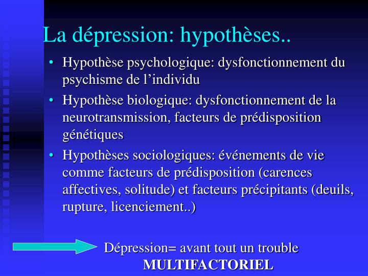 La dépression: hypothèses..