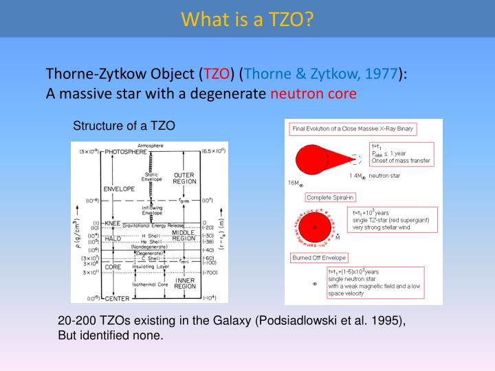 What is a TZO?