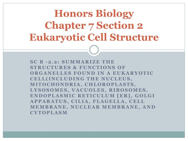 Honors biology chapter 7 section 2 eukaryotic cell structure