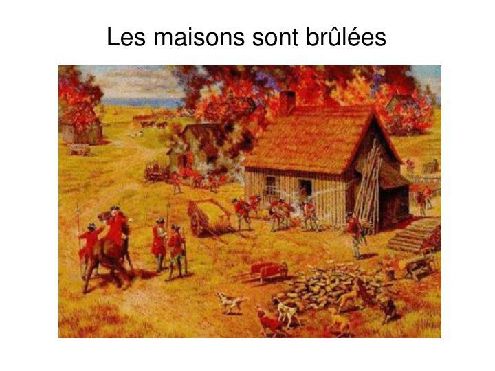 Les maisons sont brûlées