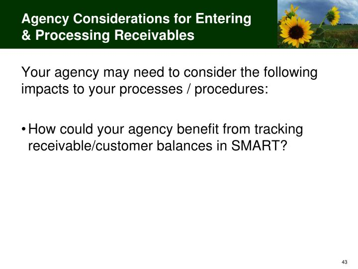Agency Considerations for