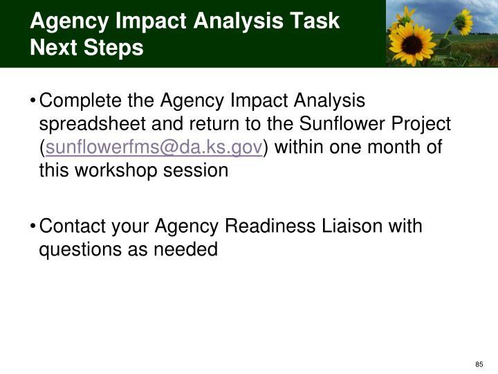 Agency Impact Analysis Task Next Steps