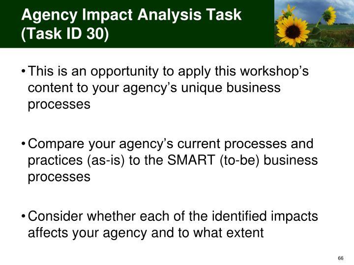 Agency Impact Analysis Task (Task ID 30)