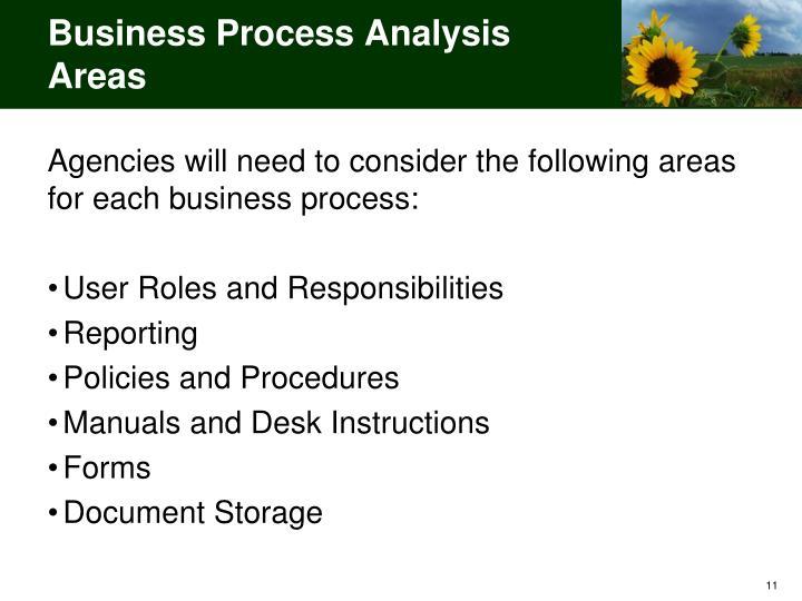 Business Process Analysis Areas
