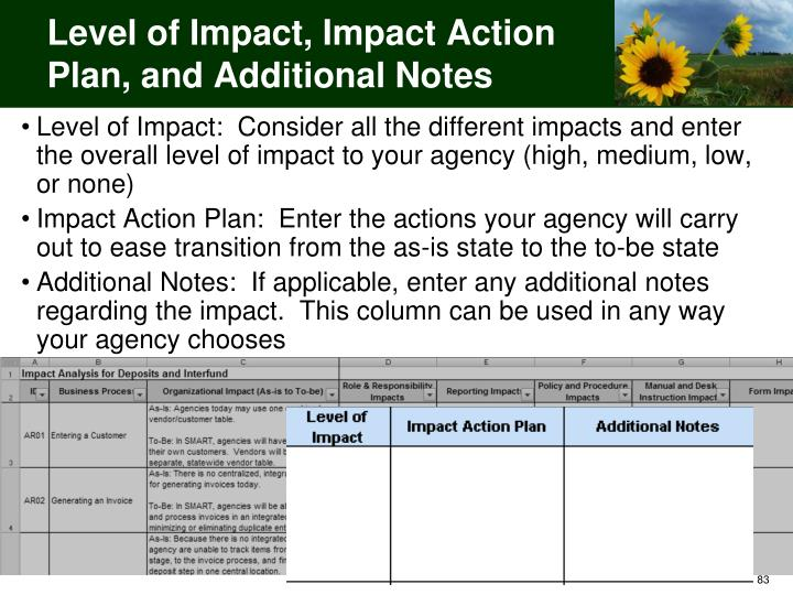 Level of Impact, Impact Action Plan, and Additional Notes