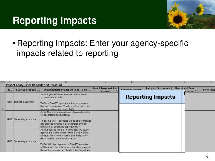 Reporting Impacts