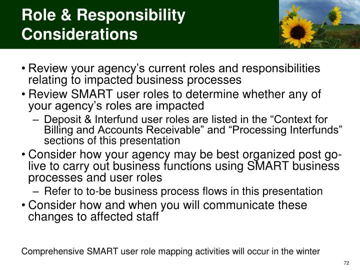 Role & Responsibility Considerations