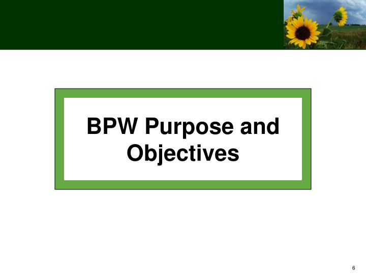BPW Purpose and Objectives