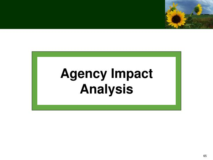 Agency Impact Analysis