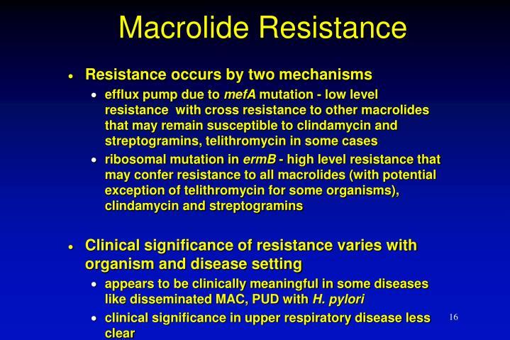Macrolide Resistance
