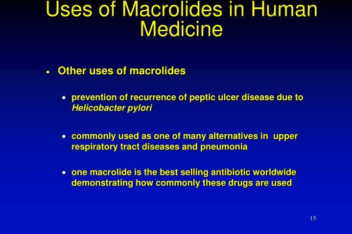 Uses of Macrolides in Human Medicine