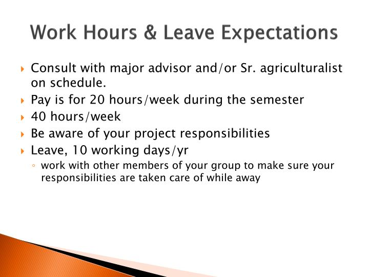 Work Hours & Leave Expectations