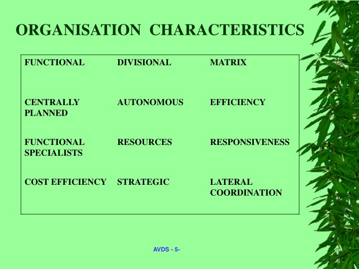ORGANISATION  CHARACTERISTICS