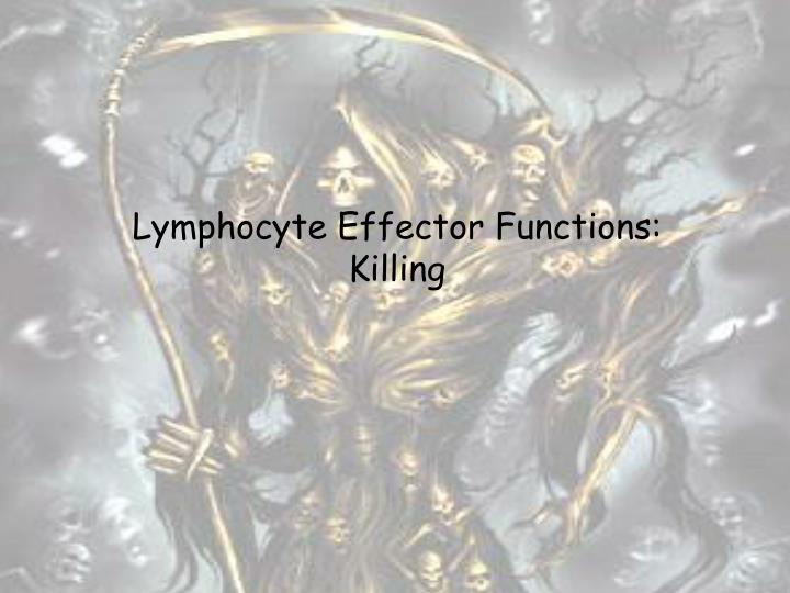 Lymphocyte Effector Functions: