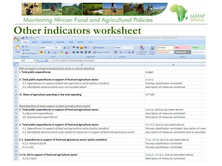 Other indicators worksheet