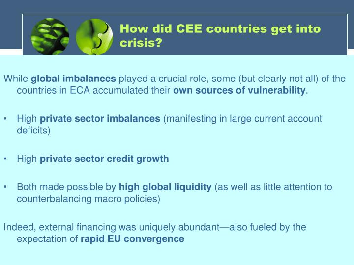 How did CEE countries get into crisis?