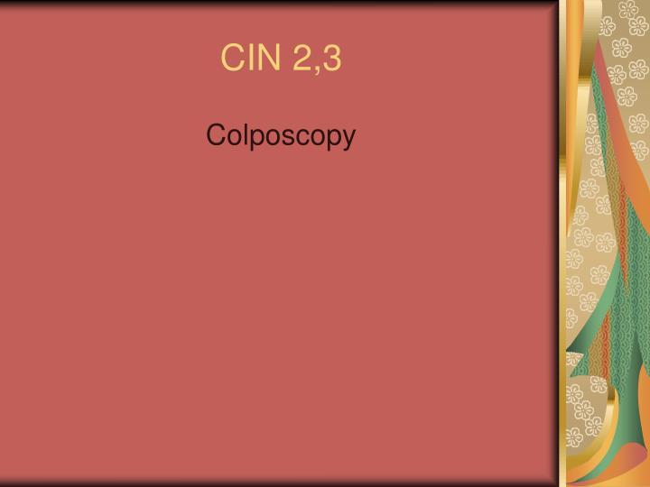 CIN 2,3