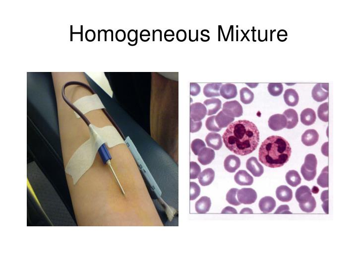 Homogeneous Mixture