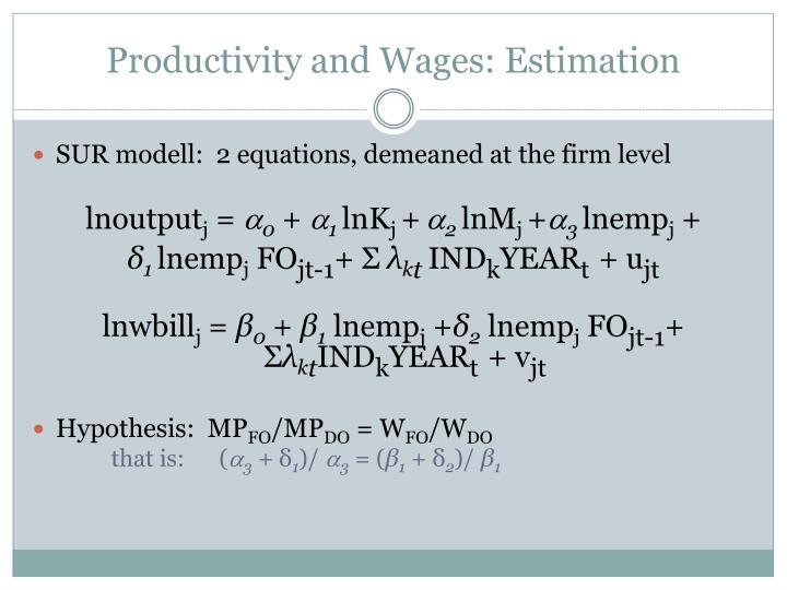 Productivity and Wages: Estimation