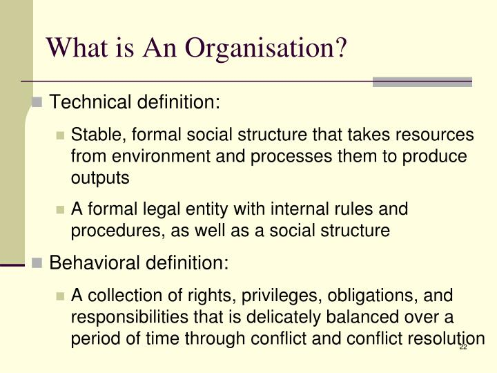 What is An Organisation?