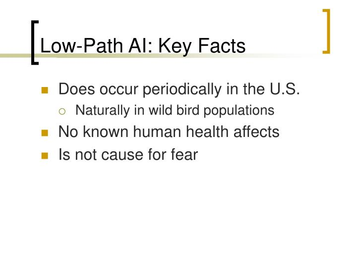 Low-Path AI: Key Facts