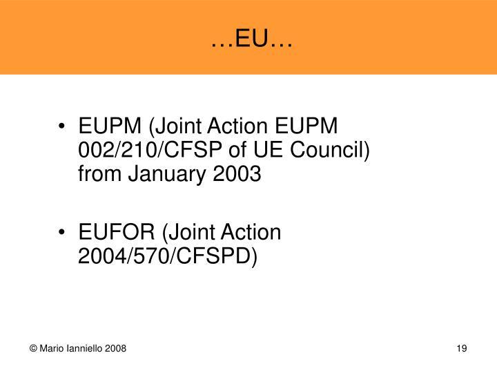 EUPM (Joint Action EUPM 002/210/CFSP of UE Council)