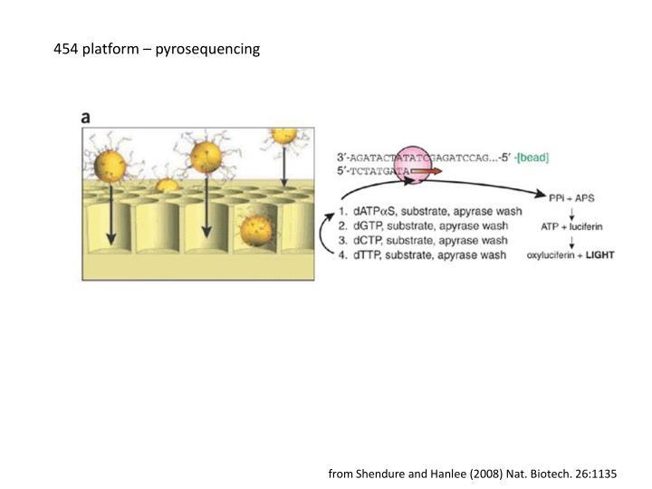 454 platform – pyrosequencing