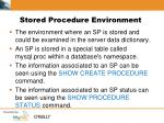 stored procedure environment