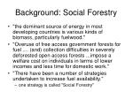 background social forestry