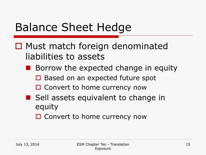 Balance Sheet Hedge