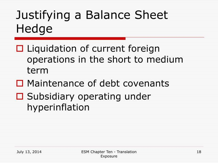 Justifying a Balance Sheet Hedge