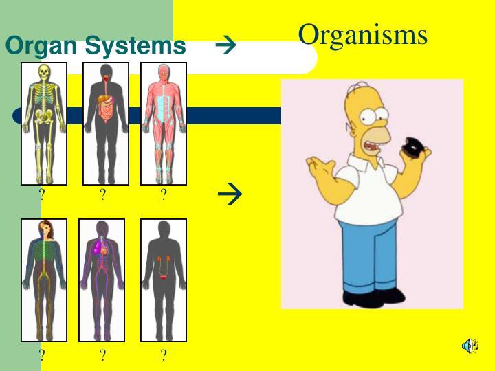 Organisms