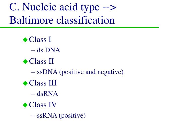 C. Nucleic acid type --> Baltimore classification