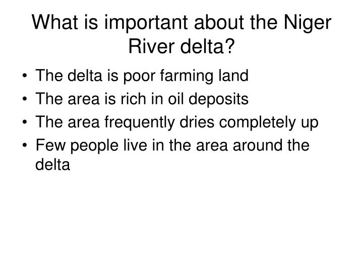 What is important about the Niger River delta?