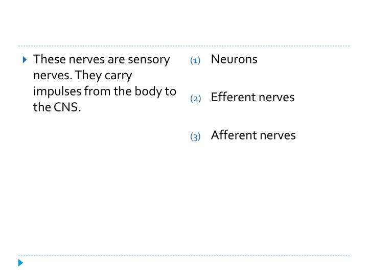 These nerves are sensory nerves. They carry impulses from the body to the CNS.