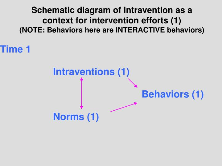 Schematic diagram of intravention as a context for intervention efforts (1)